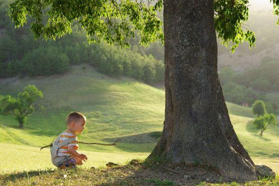 Ağaç ve çocuk fotoğrafı. fotoğraf: sefer bahadır