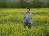 musav