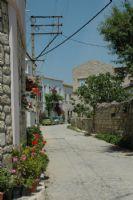 Alaçatı Sokakları
