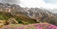 Kar Manzaras�