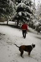 Kar Taneleri_26