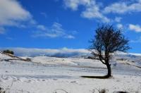 Kayseri Kar Manzarası