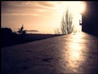 Güneş ~