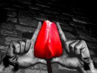 Üzülme Sen Tutarım Ellerinden