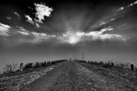 Journey Of Sun