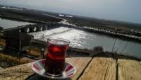 Doğada Çay