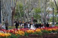 Lale Zamanı Gülhane Parkı
