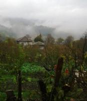 Köyümüz