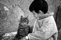 Büyük Dostluk...