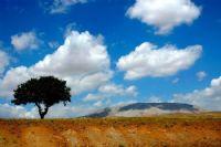 Siz Nerenin Bulutlarısınız?