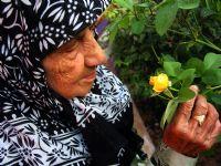 Sevgi Çiçek Gibidir