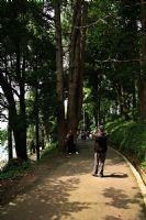 Botanik Parkı...Devamm...