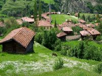 Köyler