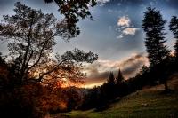 Sonbahar - Foto�raf: Mehmet G�ren