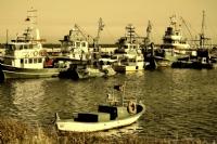 Tekneler Kayıklar.