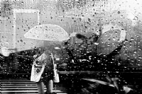 Yağmurun Sesi