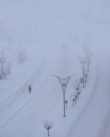 Bitlis'te Kırmızı Şemsiye