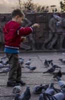 Kuşları Sevindirme (2)