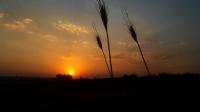 Midyat Sunset Ll