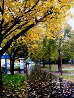 Yağmur Başladı