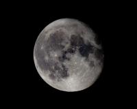 Ayımız