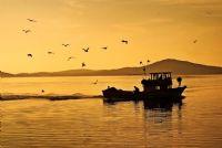 Deniz Fısıltıları