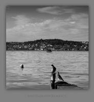 İstanbul'u Seyretmek...