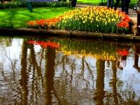 Lisse, Hollanda