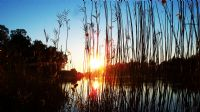 Titreyen Göl