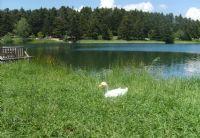 Doğa Ve Göl