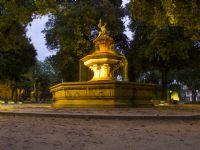 Parkta Bir Akşamüstü Gezintisi