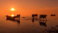 Gün Başlarken - Fotoğraf: Zafer Çankırı
