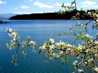 Baharda Yenidere Barajı, Tavas