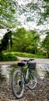 Bisiklet Ve Doğa