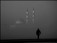 S�SLER�N ARASINDAN..... - Foto�raf: Nazif �entosun