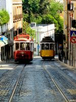 Lisboa Trams