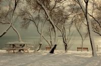 Fenerbahçe'ye Kar Yağınca