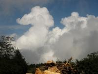 Bulut Devesi