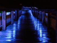Mavi Yansımalar....