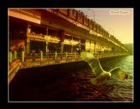 Galata Köprüsü..