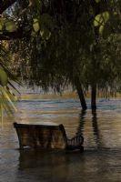 Manavgat Irmağında Su Taşınca