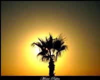 **güneşle Saklambaç Oynamaca