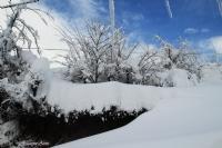 Dorukkiriş'te Kış  08.01.2015