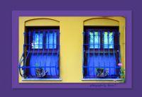 Pencereler...