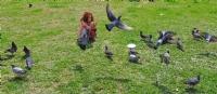 Minik Fotoğrafçı Ve Kuşlar