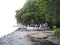 Çocuklar Ve Doğa