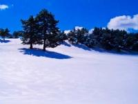 Ak Kış
