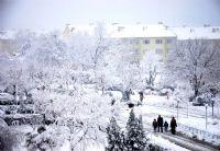 Kuzuluk'ta Kar...