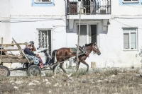 Ege İnsanı | Çeşme - Alaçatı Yerlisi