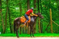 İzmit'in At'lı Güvenlik Görevlileri